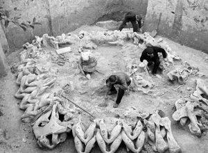 mammoth-bone-hut-excavation-ukraine-ria-novosti