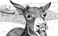 mantanzas mule